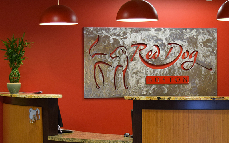 Welcome to Red Dog Boston | Red Dog Pet Resort & Spa